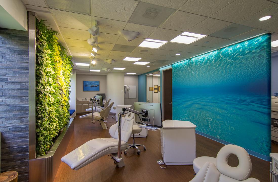 Essay Dentist Waiting Room