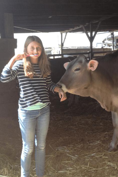 brushing on the farm